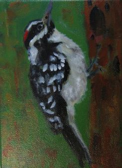 SOLD -Small woodpecker on a tree.