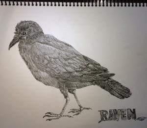 raven_pw