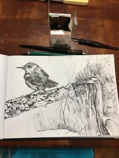 from the studio sketchbook